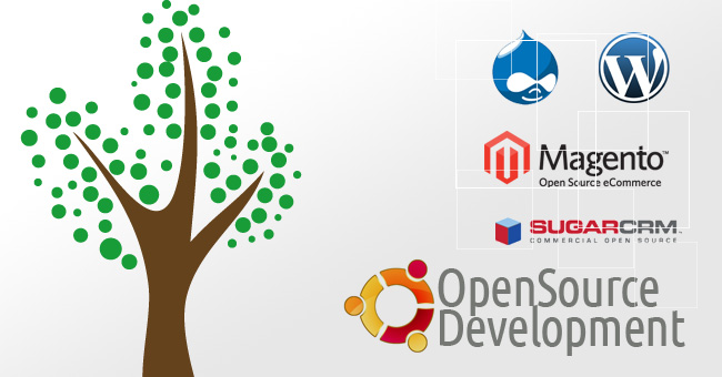 openn source development